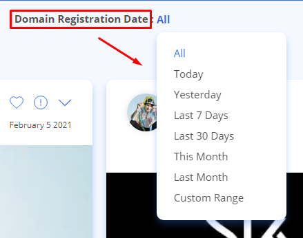 Domain registration Date