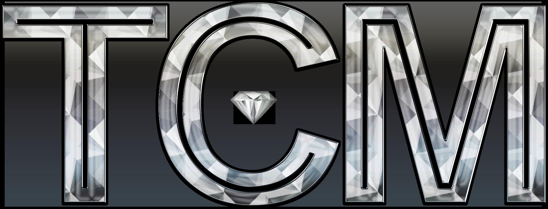 Traffic Center Media Logo