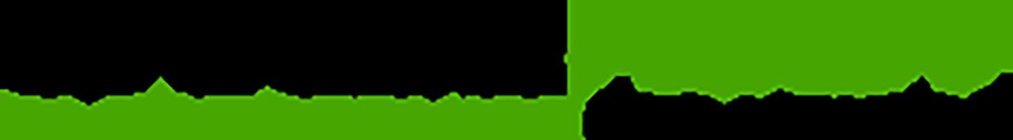 CaribeHost Logo