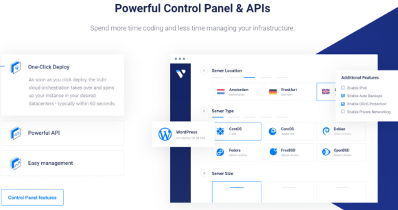 Vultr Hosting Features